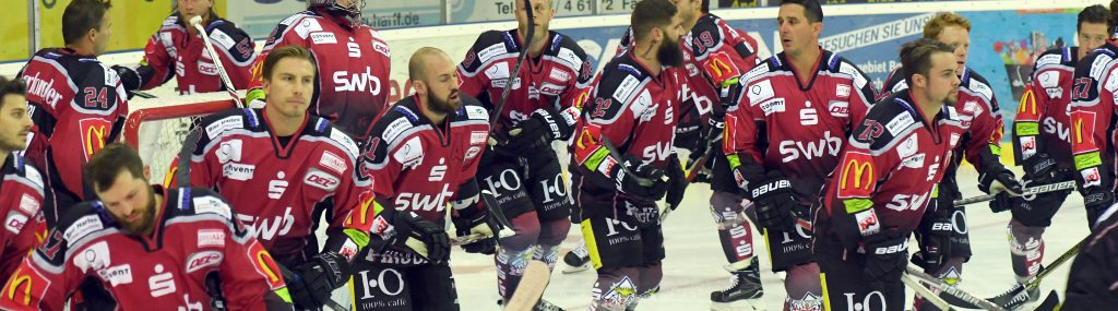 fischtown pinguins news